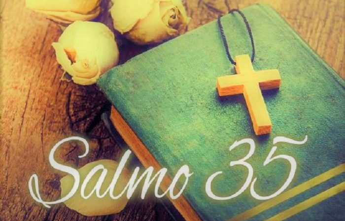 Salmo 35: Protégete de todo aquel que te desea el mal