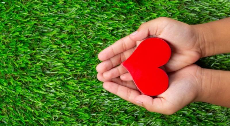 Todo lo que das de corazón, tarde o temprando, terminará regresando a ti