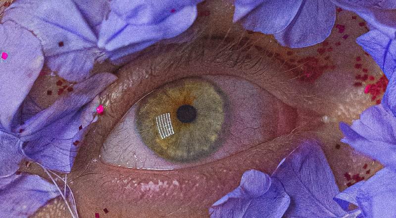 Ojo de una persona rodeado de flores